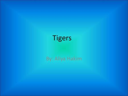 Tigers By: Aliya Hakim.