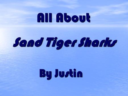 All About Sand Tiger Sharks