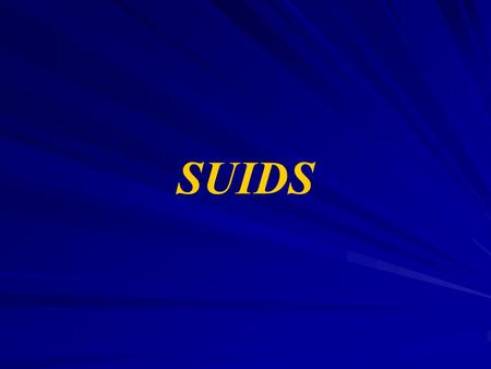 SUIDS. Definition of Sudden Infant Death Syndrome (SIDS ) The sudden and unexpected death of an apparently healthy infant usually under one year of age.