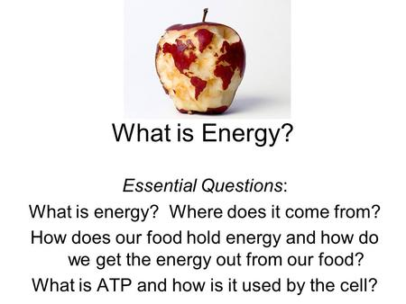 What is Energy? Essential Questions: What is energy? Where does it come from? How does our food hold energy and how do we get the energy out from our food?