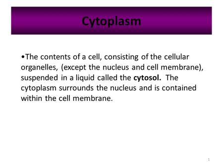 1 Cytoplasm The contents of a cell, consisting of the cellular organelles, (except the nucleus and cell membrane), suspended in a liquid called the cytosol.
