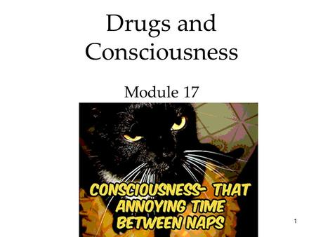 1 Drugs and Consciousness Module 17. 2 3 States of Consciousness Overview Drugs and Consciousness  Dependence and Addiction  Psychoactive Drugs  Influences.