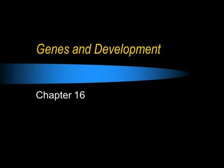 Genes and Development Chapter 16. Development All the changes that occur during an organism's lifetime Cell specialization: Cell determination: specific.