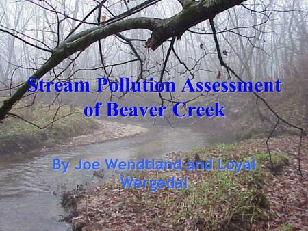 Stream Pollution Assessment of Beaver Creek By Joe Wendtland and Loyal Wergedal.