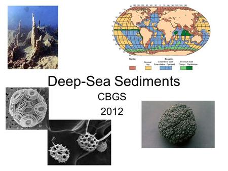 Deep-Sea Sediments CBGS 2012. 3 types of sediment cover most of the deep ocean floor: Abyssal clay- covers most of the deep ocean floor, accumulates at.
