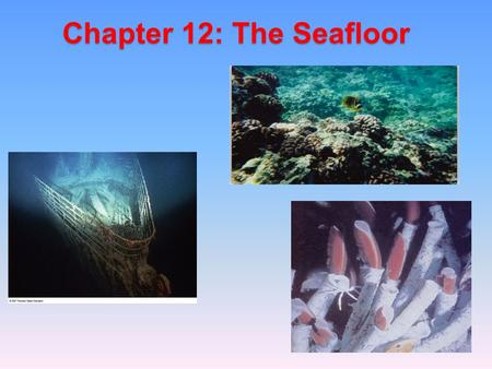 Chapter 12: The Seafloor. Introduction The seafloor makes up the largest part of the Earth's surface.