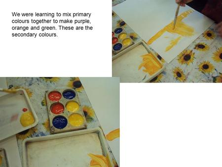 We were learning to mix primary colours together to make purple, orange and green. These are the secondary colours.