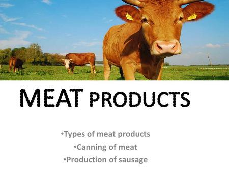 Types of meat products Canning of meat Production of sausage.