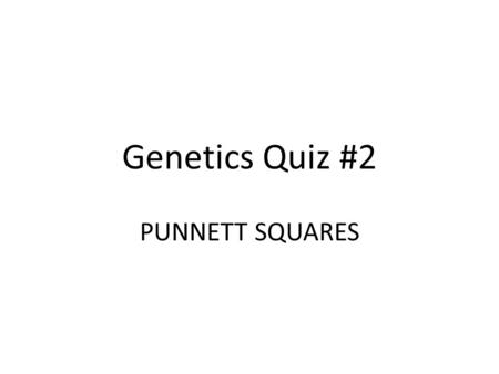 Genetics Quiz #2 PUNNETT SQUARES. Question #1: A white flowered plant is crossed with a plant that is heterozygous for the trait. What percentage of the.