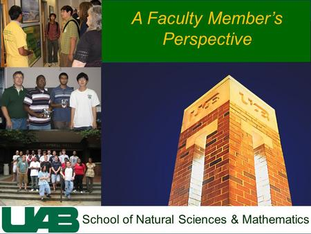 School of Natural Sciences & Mathematics A Faculty Member's Perspective.