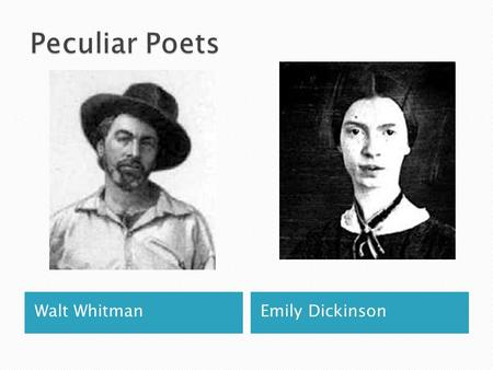 Walt WhitmanEmily Dickinson.  In the early 1800's, American literature was in the Romantic Period (1800-1855)  Romanticism is characterized by: use.