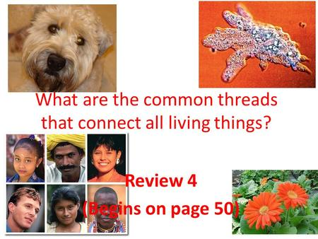 Review 4 (Begins on page 50) What are the common threads that connect all living things?
