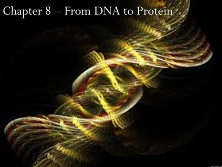 "Chapter 8 – From DNA to Protein. Old dead people to add to our ""Important People"" chart PersonOriginTime Frame Importance Frederick Griffith English1928""transformation."