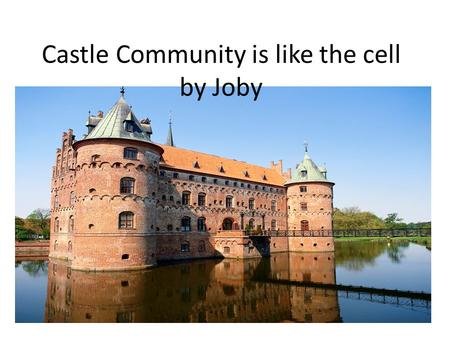 Castle Community is like the cell by Joby. The Moat is like the cell membrane The moat blocks and it allows who or what comes in. Just like the cell membrane.