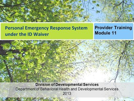 Personal Emergency Response System under the ID Waiver Division of Developmental Services Department of Behavioral Health and Developmental Services 2013.