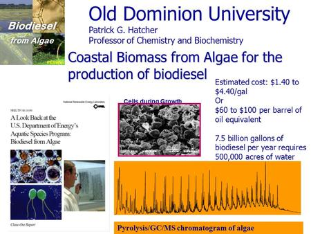 Coastal Biomass from Algae for the production of biodiesel Estimated cost: $1.40 to $4.40/gal Or $60 to $100 per barrel of oil equivalent 7.5 billion gallons.