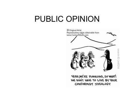 PUBLIC OPINION. WHAT IS IT? PURE LIBERAL- Economic liberal/social liberal –Econ- redistribute wealth, regulate business –Social- rights of the individual.