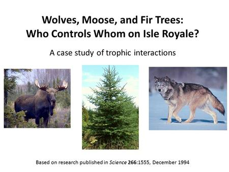 Wolves, Moose, and Fir Trees: Who Controls Whom on Isle Royale? A case study of trophic interactions Based on research published in Science 266:1555, December.