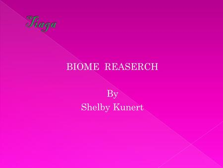 BIOME REASERCH By Shelby Kunert.  North American Hemisphere  Description – stretches from Canada to Northern to European to Asia  Soil type- wet &