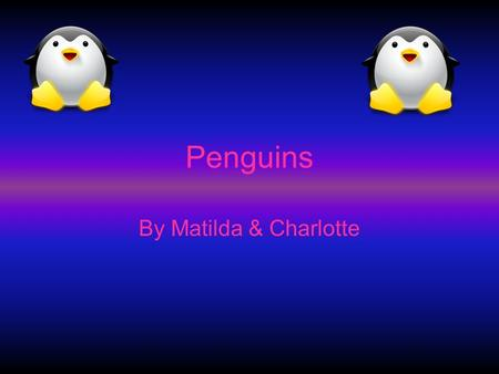 Penguins By Matilda & Charlotte.