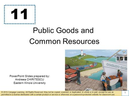 PowerPoint Slides prepared by: Andreea CHIRITESCU Eastern Illinois University 11 Public Goods and Common Resources © 2015 Cengage Learning. All Rights.