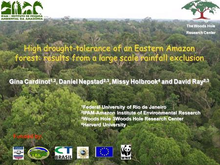High drought-tolerance of an Eastern Amazon forest: results from a large scale rainfall exclusion Gina Cardinot 1,2, Daniel Nepstad 2,3, Missy Holbrook.