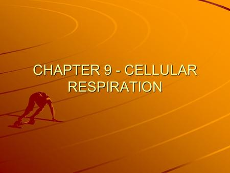 CHAPTER 9 - CELLULAR RESPIRATION. CELLULAR RESPIRATION Process that releases energy by breaking down food molecules in the presence of oxygen 6 O 2 +