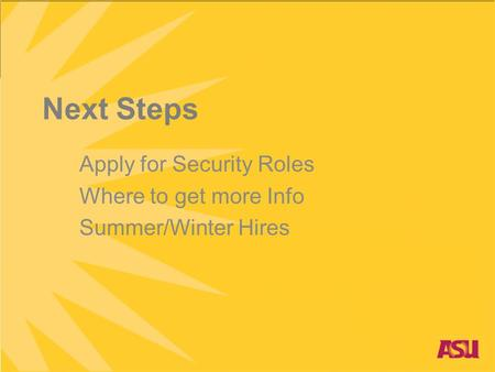 Next Steps Apply for Security Roles Where to get more Info Summer/Winter Hires.
