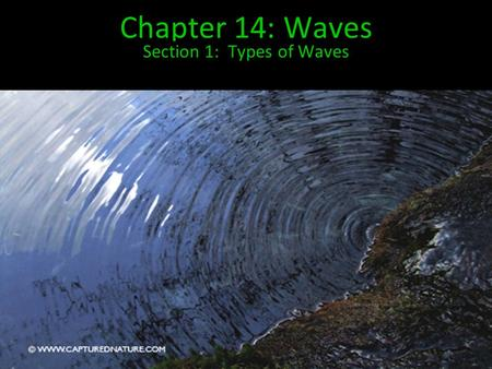 Chapter 14: Waves Section 1: Types of Waves. Most of us picture waves of water splashing on a shore when we hear the word… However, waves are found in.