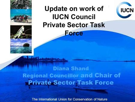 Update on work of IUCN Council Private Sector Task Force Diana Shand Regional Councillor and Chair of Private Sector Task Force The International Union.