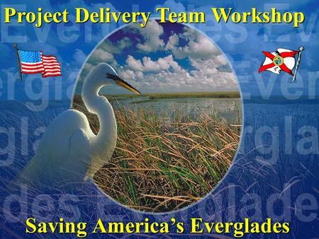 Saving America's Everglades Project Delivery Team Workshop.