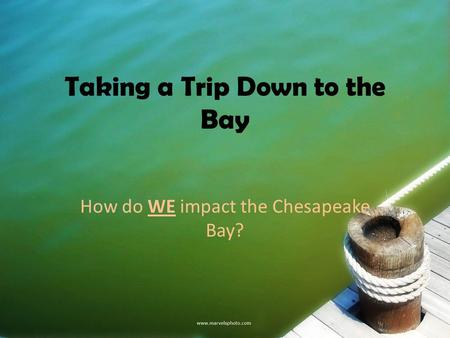 Taking a Trip Down to the Bay How do WE impact the Chesapeake Bay?