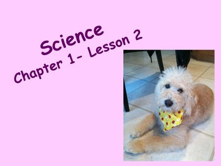 Science Chapter 1- Lesson 2.