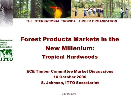 © ITTO 2000 THE INTERNATIONAL TROPICAL TIMBER ORGANIZATION Forest Products Markets in the New Millenium: Tropical Hardwoods ECE Timber Committee Market.