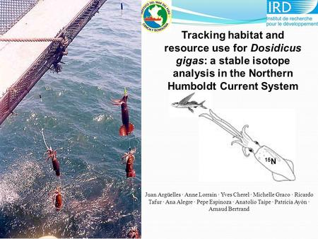 15 N Tracking habitat and resource use for Dosidicus gigas: a stable isotope analysis in the Northern Humboldt Current System Juan Argüelles · Anne Lorrain.