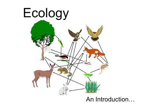 Ecology An Introduction…. Ecology – the study of the interactions that take place between organisms and their environment What would be considered an.