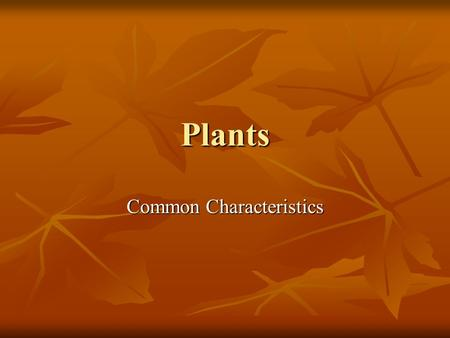 Plants Common Characteristics. Characteristics Multicellular Multicellular More than one cell More than one cell Cell Wall Cell Wall Made of cellulose.