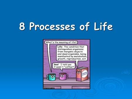 8 Processes of Life. Life Cycle 1. Life Cycle- all organisms are born, grow, and die.