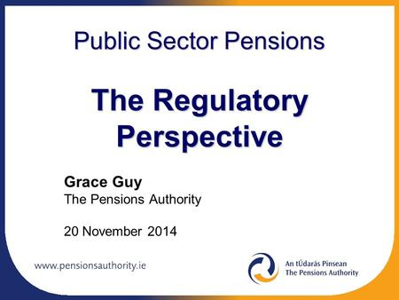 Public Sector Pensions The Regulatory Perspective Grace Guy The Pensions Authority 20 November 2014.