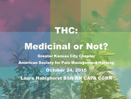 THC: Medicinal or Not? Greater Kansas City Chapter American Society for Pain Management Nursing October 24, 2015 Laura Habighorst BSN RN CAPA CGRN.
