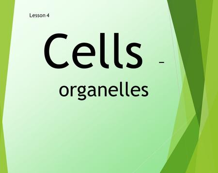 Cells – organelles Lesson 4. LO- Level 3 – Name the parts of a cell. Level 4 – To state the function of the parts of an animal and a plant cell. Level.