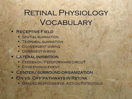 Retinal Physiology Vocabulary  Receptive Field  Spatial summation  Temporal summation  Convergent wiring  Divergent wiring  Lateral inhibition 