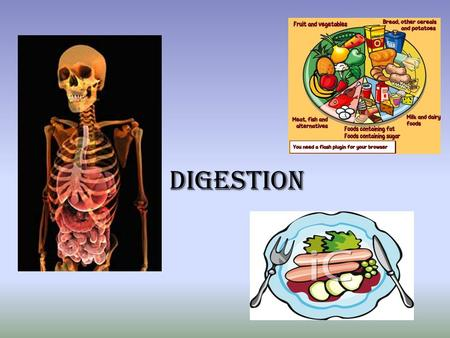 Digestion. What is digestion? Before our bodies can use the food that we eat it must first be digested. Definition of Digestion: –See if you can fill.