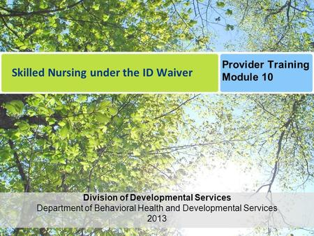 Skilled Nursing under the ID Waiver Division of Developmental Services Department of Behavioral Health and Developmental Services 2013 Provider Training.