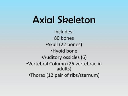 Axial Skeleton Includes: 80 bones Skull (22 bones) Hyoid bone