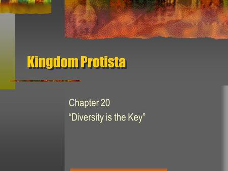 "Kingdom Protista Chapter 20 ""Diversity is the Key"""