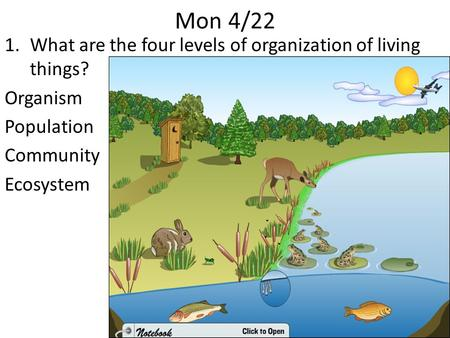 Mon 4/22 1.What are the four levels of organization of living things? Organism Population Community Ecosystem.