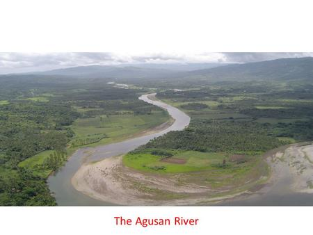 The Agusan River. Agricultural farms and tree plantations in the midstream of the Agusan River Basin.