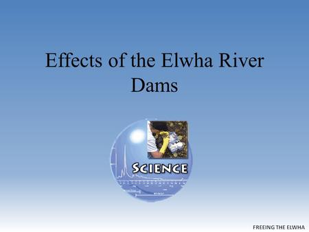 Effects of the Elwha River Dams. Largest Watershed in the Park Covers almost 20% of Olympic National Park.