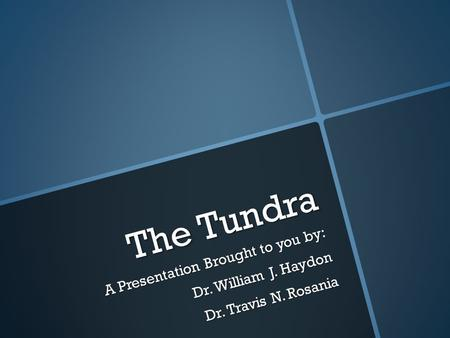 The Tundra A Presentation Brought to you by: Dr. William J. Haydon Dr. Travis N. Rosania.